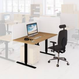 Arbetsplats Bord + Stol Ek