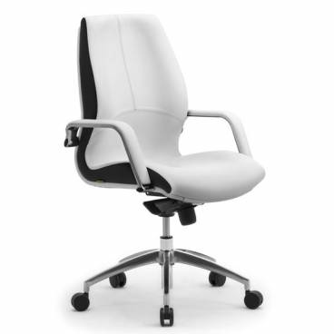 Wave Mid Back Designer Office Chair